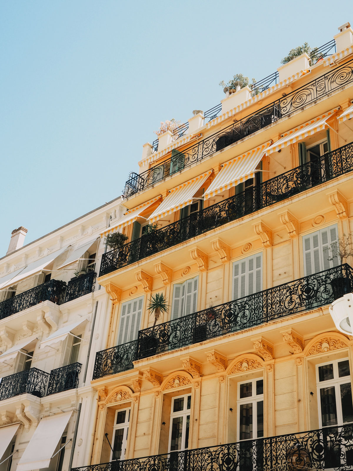 Details of A 48 Hour Trip to the Cannes Film Festival